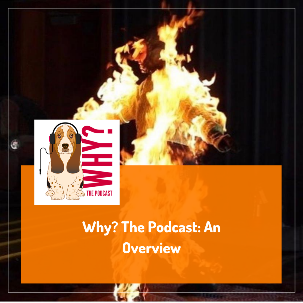 Why_ The Podcast_ An Overview